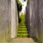 "Original Photo ""Green Stairway"" Gialombardo 2013"